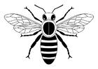 Bilde å fargelegge bie