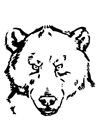 Bilde å fargelegge bjørnehode