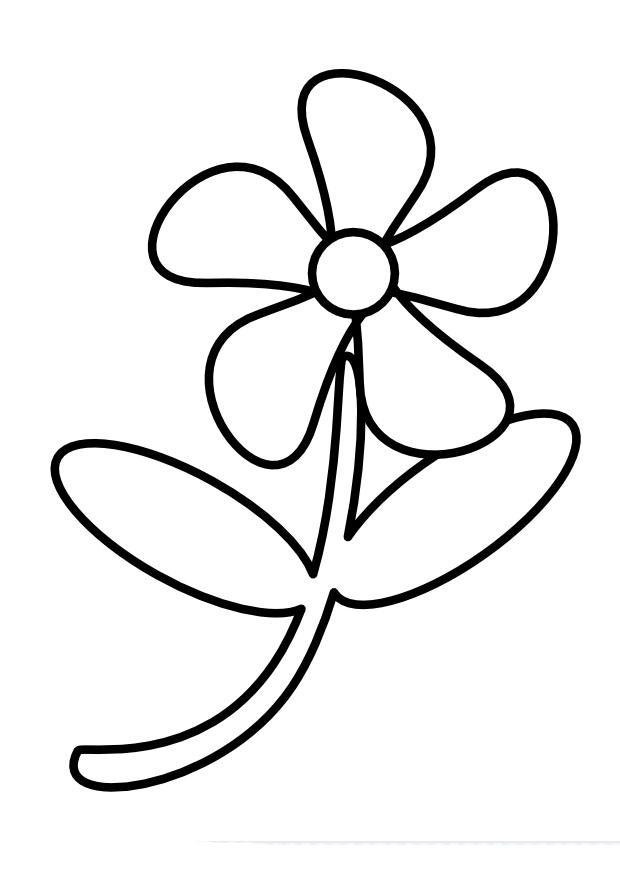 bilde 229 fargelegge blomst gratis bildene for fargelegging