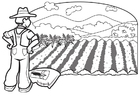 Bilde å fargelegge bonde 1