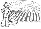 Bilde å fargelegge bonde