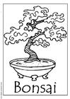 Bilde å fargelegge bonsai