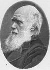 Bilde å fargelegge Charles Darwin