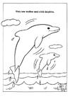 Bilde å fargelegge delfiner