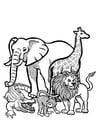 Bilde å fargelegge dyr i naturen