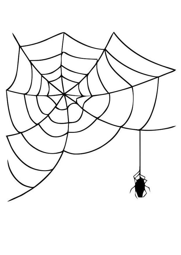 Kleurplaten Van De Herfst Bilde 229 Fargelegge Edderkopp Med Spindelvev Bildene For