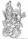 Bilde å fargelegge en fe blant rosene