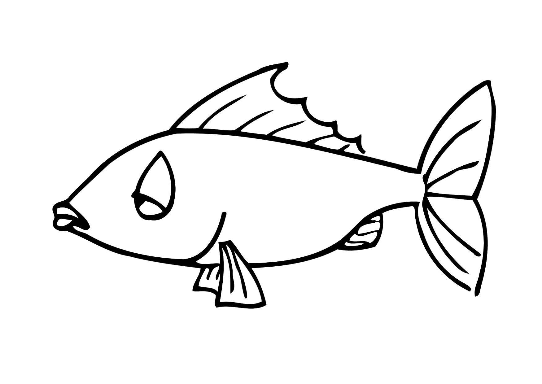 bilde  u00e5 fargelegge fisk