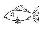 Bilde å fargelegge fisk