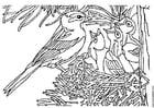 Bilde å fargelegge fugl med rede