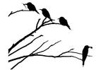 Bilde å fargelegge fugler pÃ¥ en gren