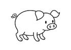 Bilde å fargelegge gris