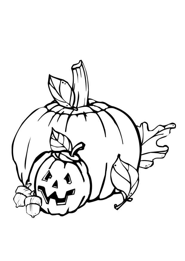 Bilde 229 Fargelegge Halloween Bil 28916 Images