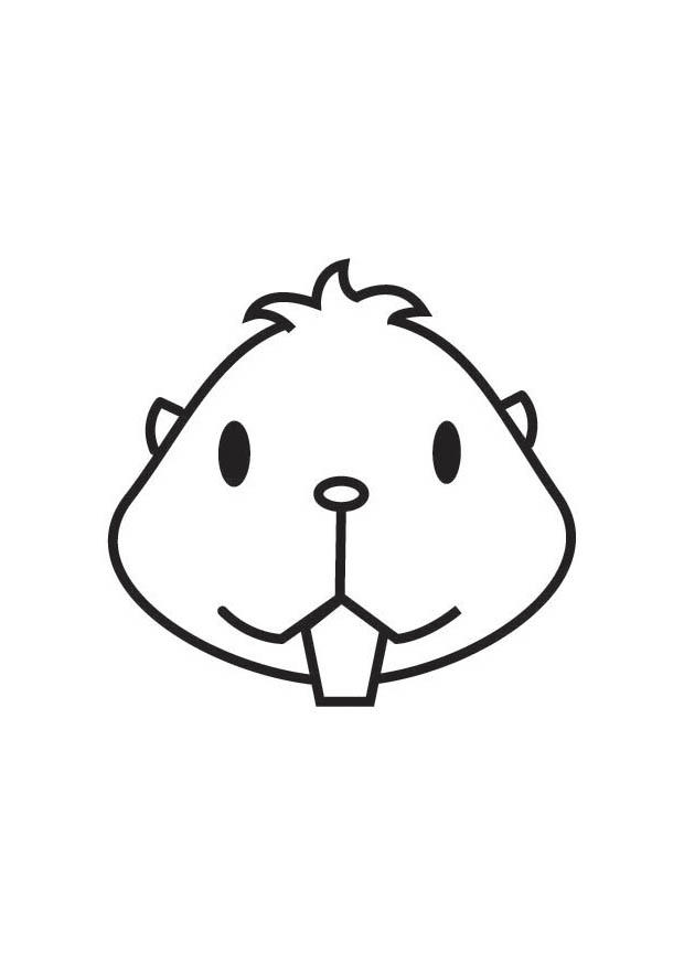 Bilde 229 Fargelegge Hamsterhode Gratis Bildene For