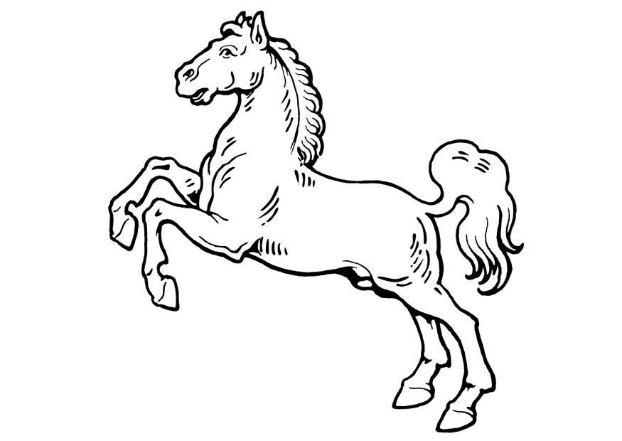 bilde 229 fargelegge hest bil 19310