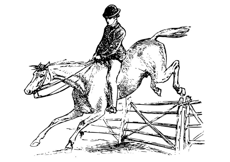 Bilde 229 Fargelegge Hest Med Rytter Bil 27894