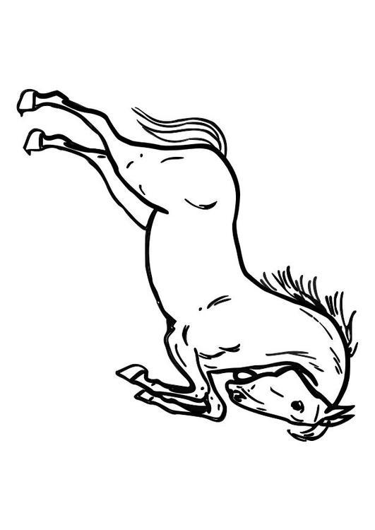Bilde 229 Fargelegge Hest Som Hopper Bil 10362