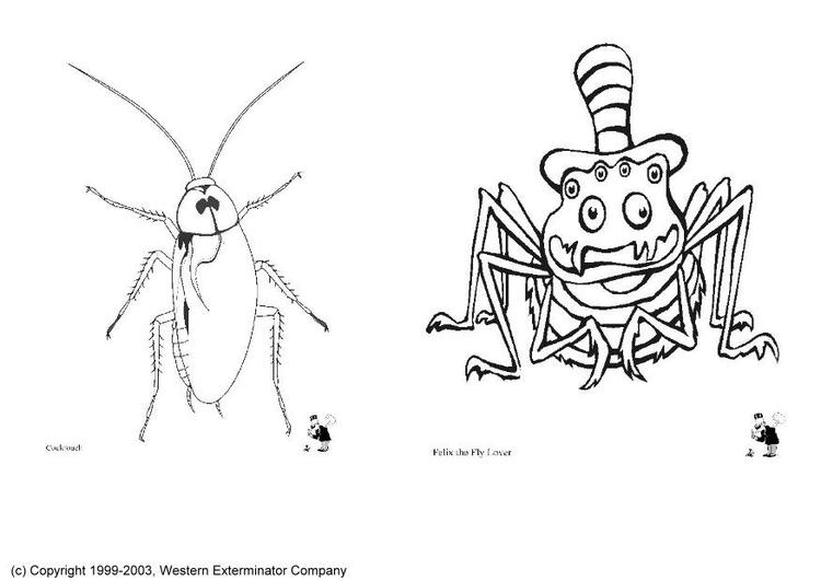 Dibujos De Insectos Para Colorear: Bilde å Fargelegge Insekter