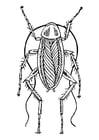 Bilde å fargelegge kakkerlakk