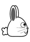 Bilde å fargelegge kanin - side