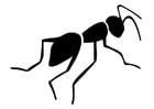Bilde å fargelegge maur
