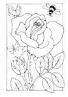 Bilde å fargelegge rose med bie og sommerfugl