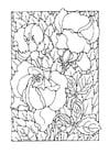 Bilde å fargelegge roser