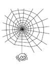 Bilde å fargelegge spindelvev med edderkopp