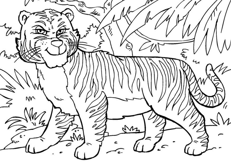 bilde å fargelegge tiger  gratis bildene for fargelegging