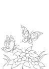 Bilde å fargelegge vÃ¥ren, sommerfugler ved blomstene