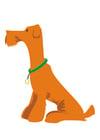 bilde hund - åsitte