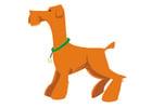 bilde hund - å stå