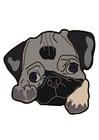 bilde hund - pug