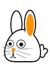 bilde kanin - buet