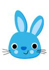 bilde kanin