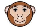 bilde r1 - ape