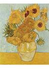bilde Vincent Van Gogh - solsikker