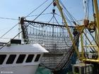 Foto fiskebåt med nett
