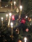 Foto juletre med lys