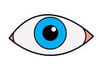 bilde øye