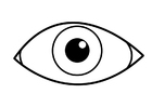 Bilde å fargelegge øye