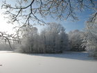 Foto vinter
