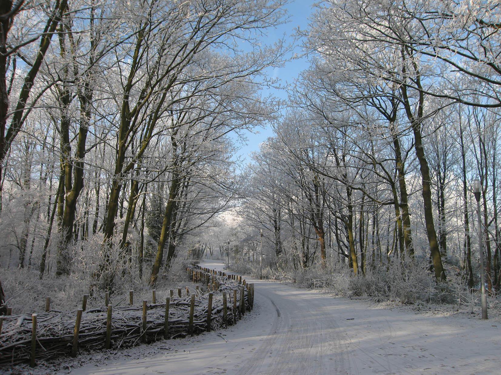Bilderesultat for vinterlandskap